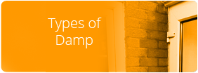 Homeshield - Types of Damp